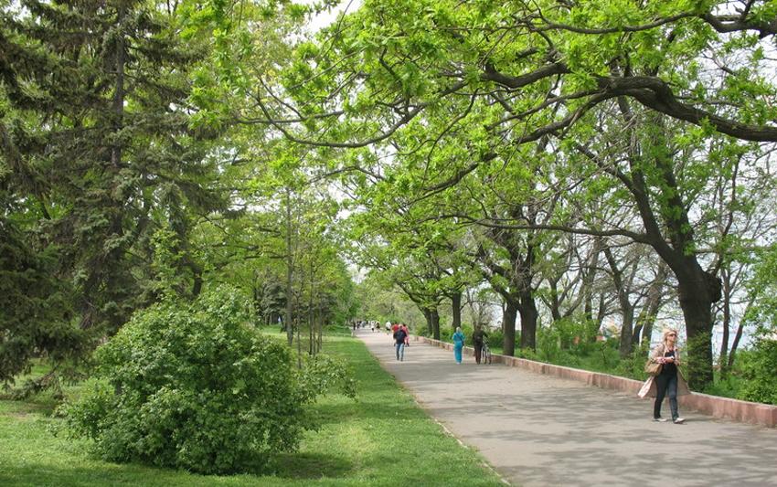 парк шевченко 7